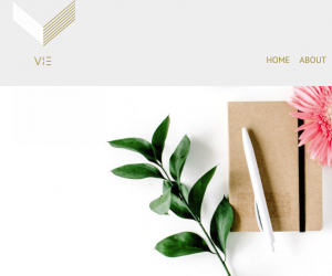 Vie Legal Website
